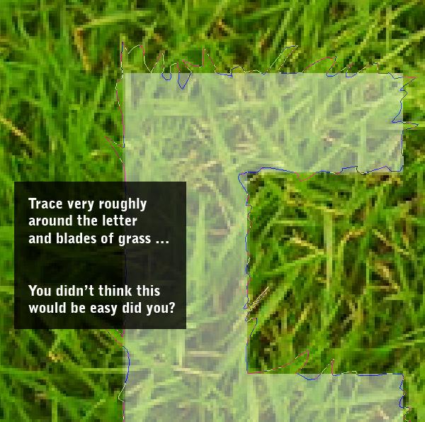 11 Thiết Kế Hiệu Ứng Text bằng Cỏ trong Photoshop