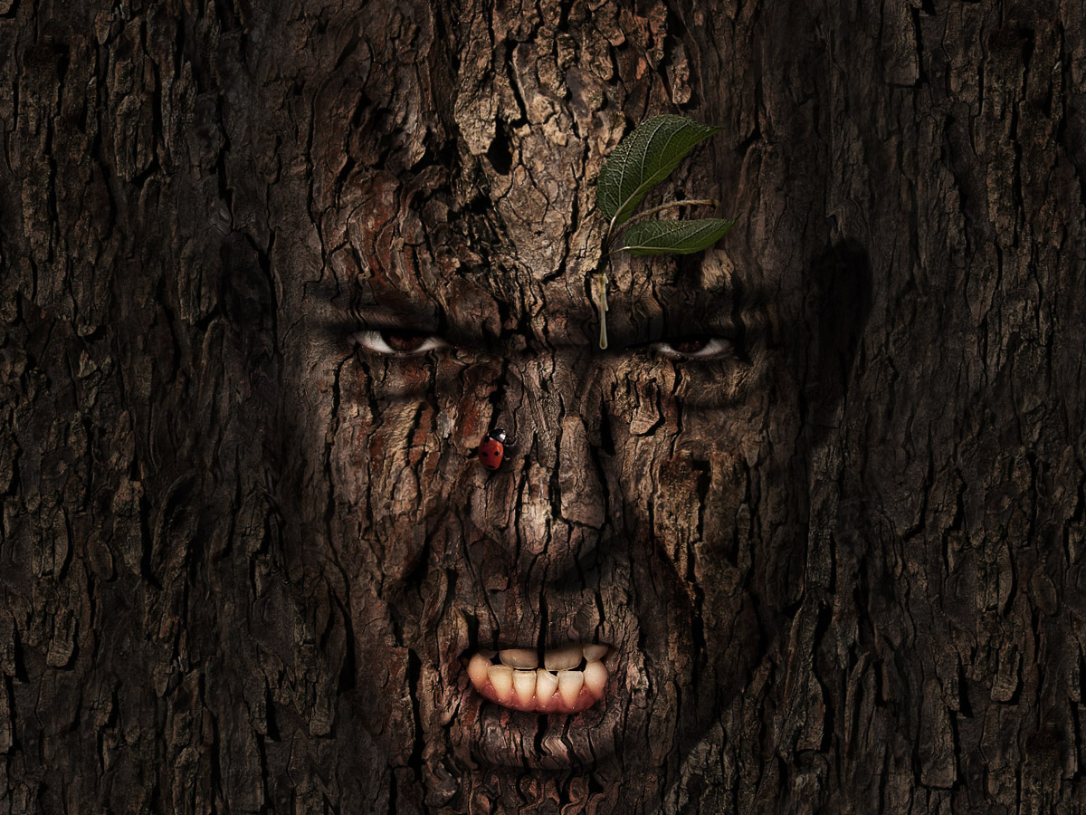 http://psdtuts.s3.amazonaws.com/242_Tree_Man/final_large.jpg