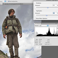 What Does a Histogram Tell Us?
