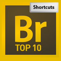 Top 10 Reasons You Should be Using Adobe Bridge